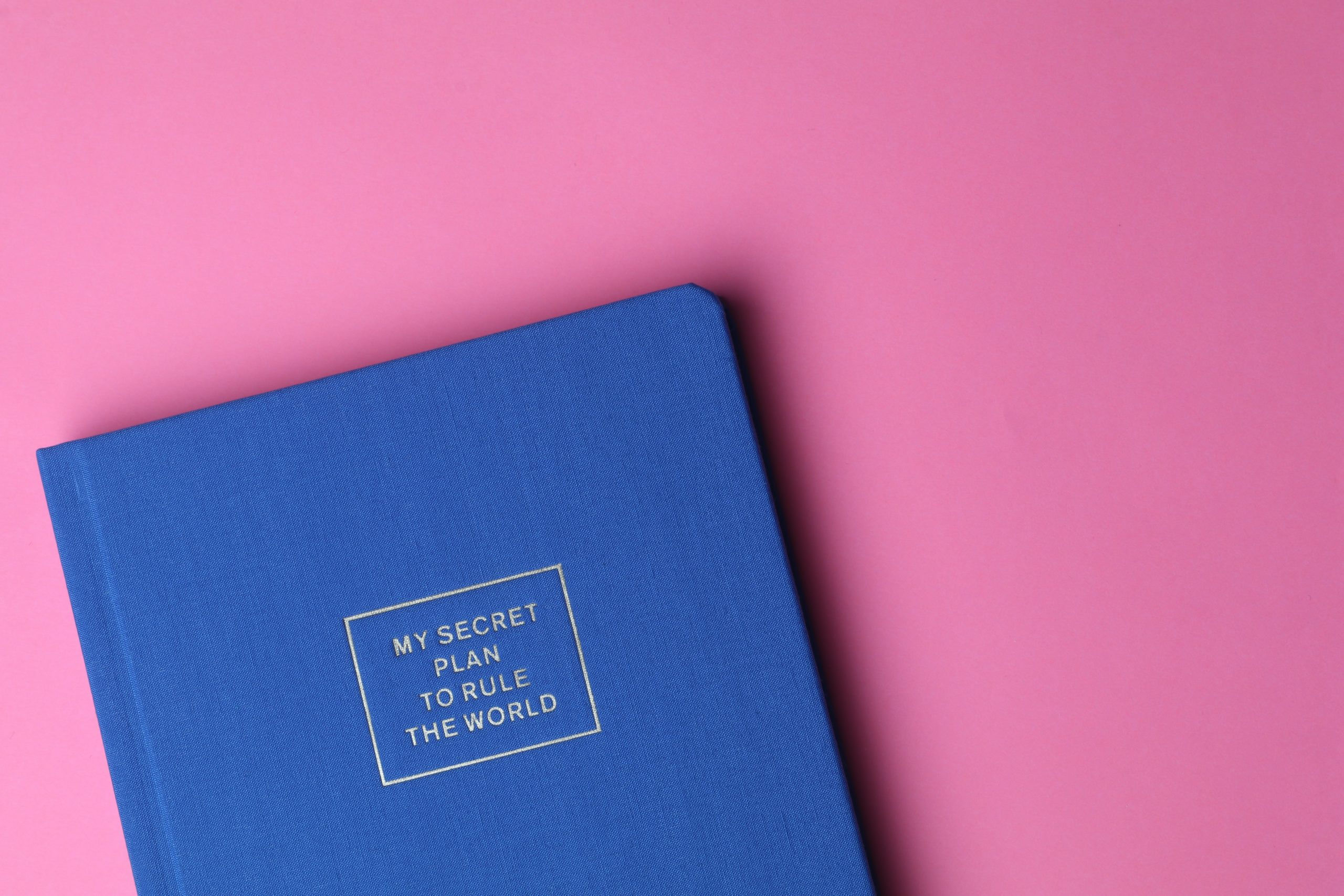 A book with a blue cover on a pink background learning about social media algorithms